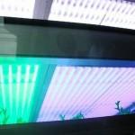 CCFL Grow Light